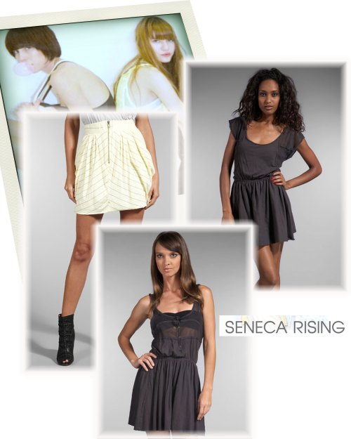 seneca-rising