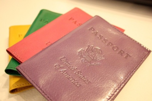abas passport cases