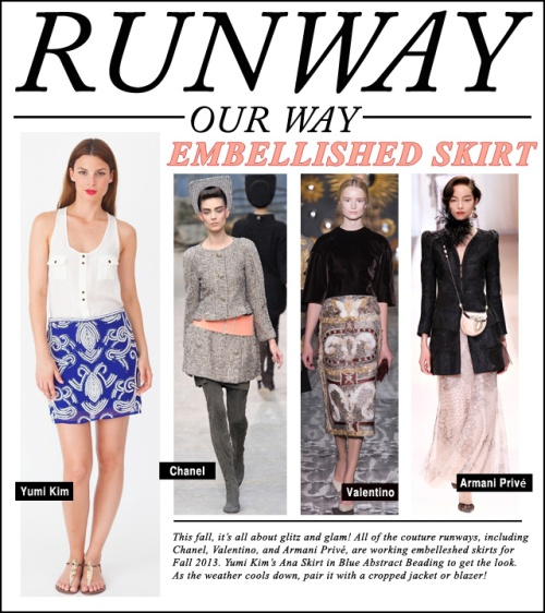 Runway Our Way - embelleshed skirt